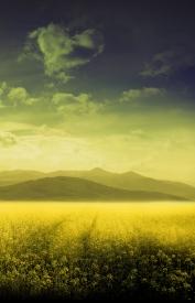 Obraz Snová krajina