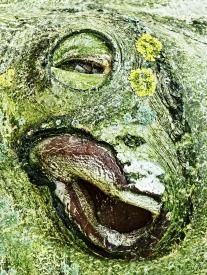 Obraz Stromový duch