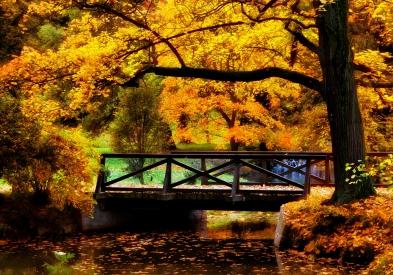 Obraz V zámeckém parku