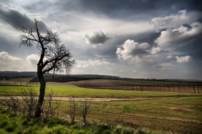 Obraz Česká krajina na konci léta