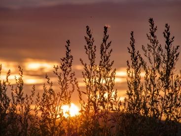 Obraz Klasy v západu slunce