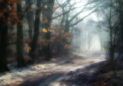 Obraz Když zima čaruje