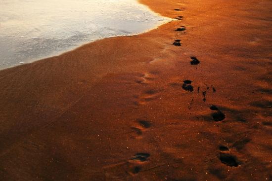 Obraz Stopy v písku