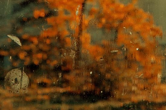 Obraz Podzim za sklem