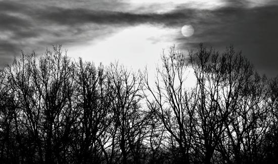 Obraz Před bouří