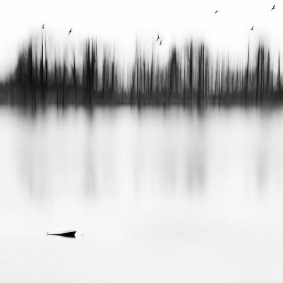 Obraz U jezera