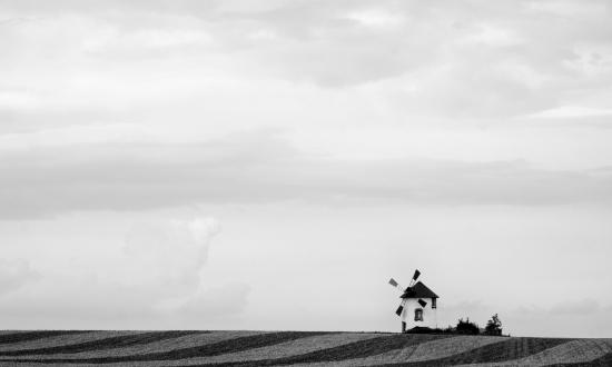 Obraz Černobílý obraz větrného mlýnu s krajinou