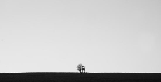 Obraz Minimalistický černobílý obraz s posedem a stromem