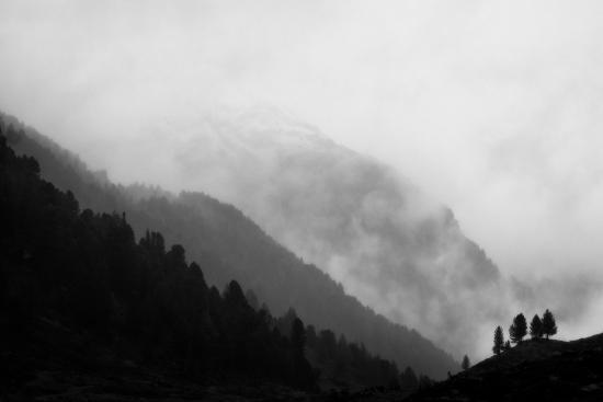 Obraz Černobílý obraz hor s mlhou a stromy