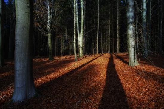Obraz Podzimní