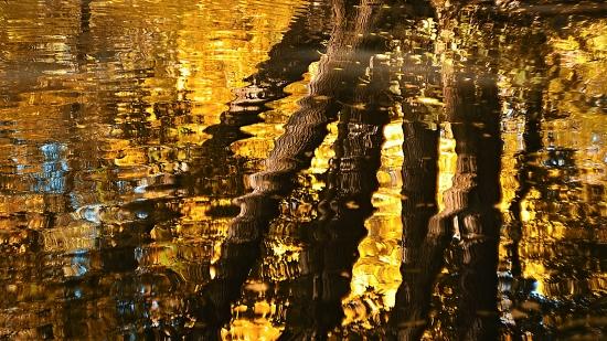 Obraz Zrcadlení