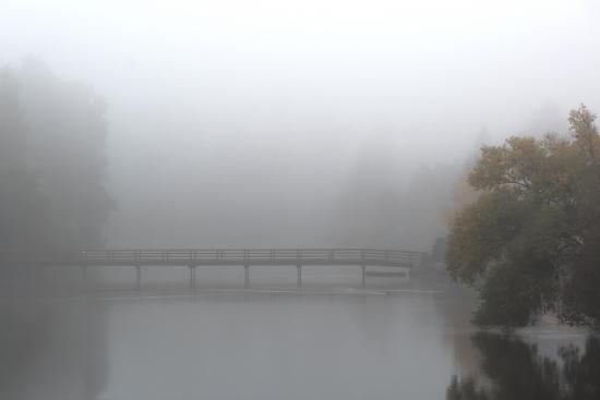 Obraz Most v mlze