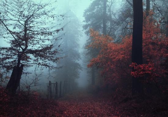 Obraz Podzimní čas