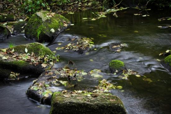 Obraz Počátek řeky