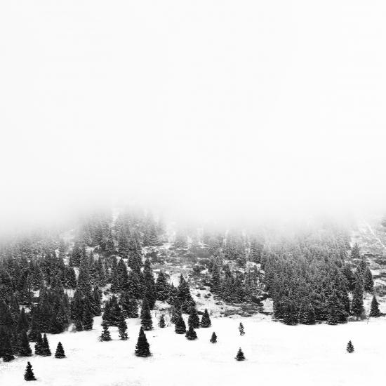 Obraz Krušné hory